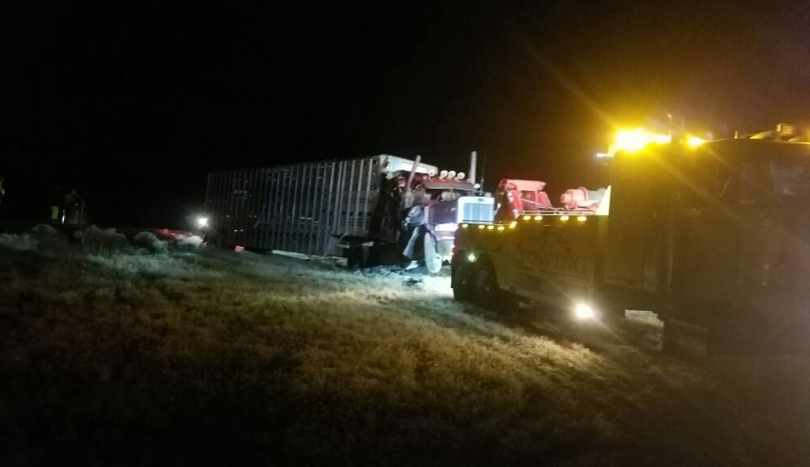 Nighttime Cattle Truck Recovery2